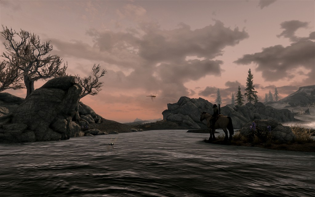 Skyrim in my time of need best option