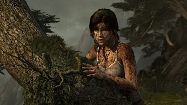 Tomb Raider PC Comparison Screen 3