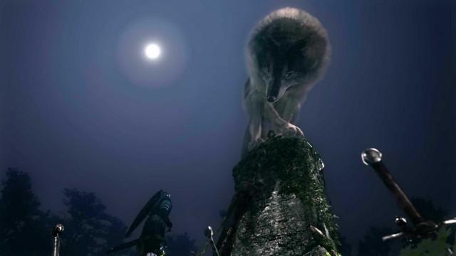 Darksouls Wolf