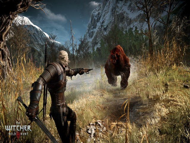 The Witcher 3 Level Up Guide