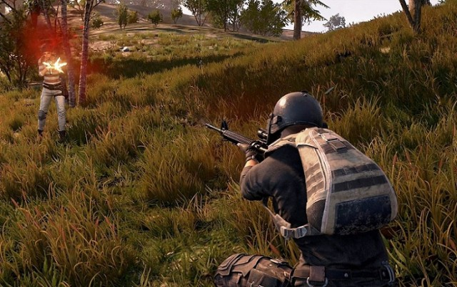 What You Can Learn From The Team Behind Pubg: PlayerUnknown's Battlegrounds Wiki: Beginners, Pro Tips