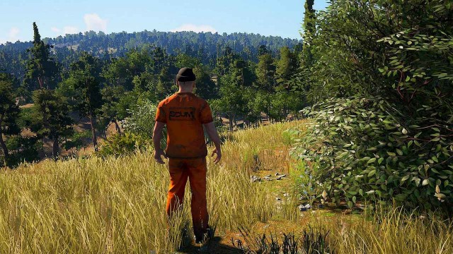 SCUM Food Guide - How And Where To Find Food