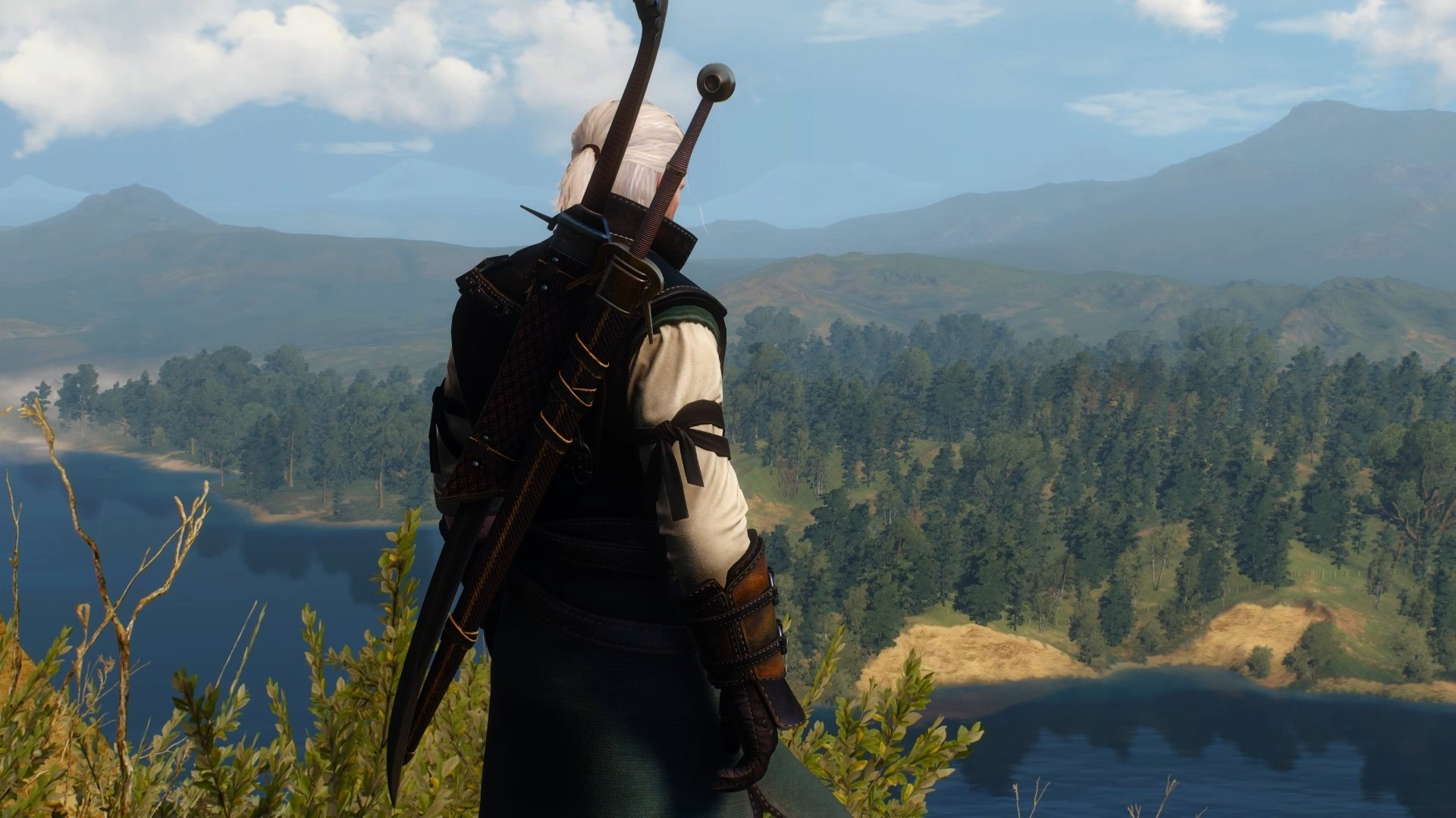 The Witcher 3 got a massive downgrade : pcmasterrace