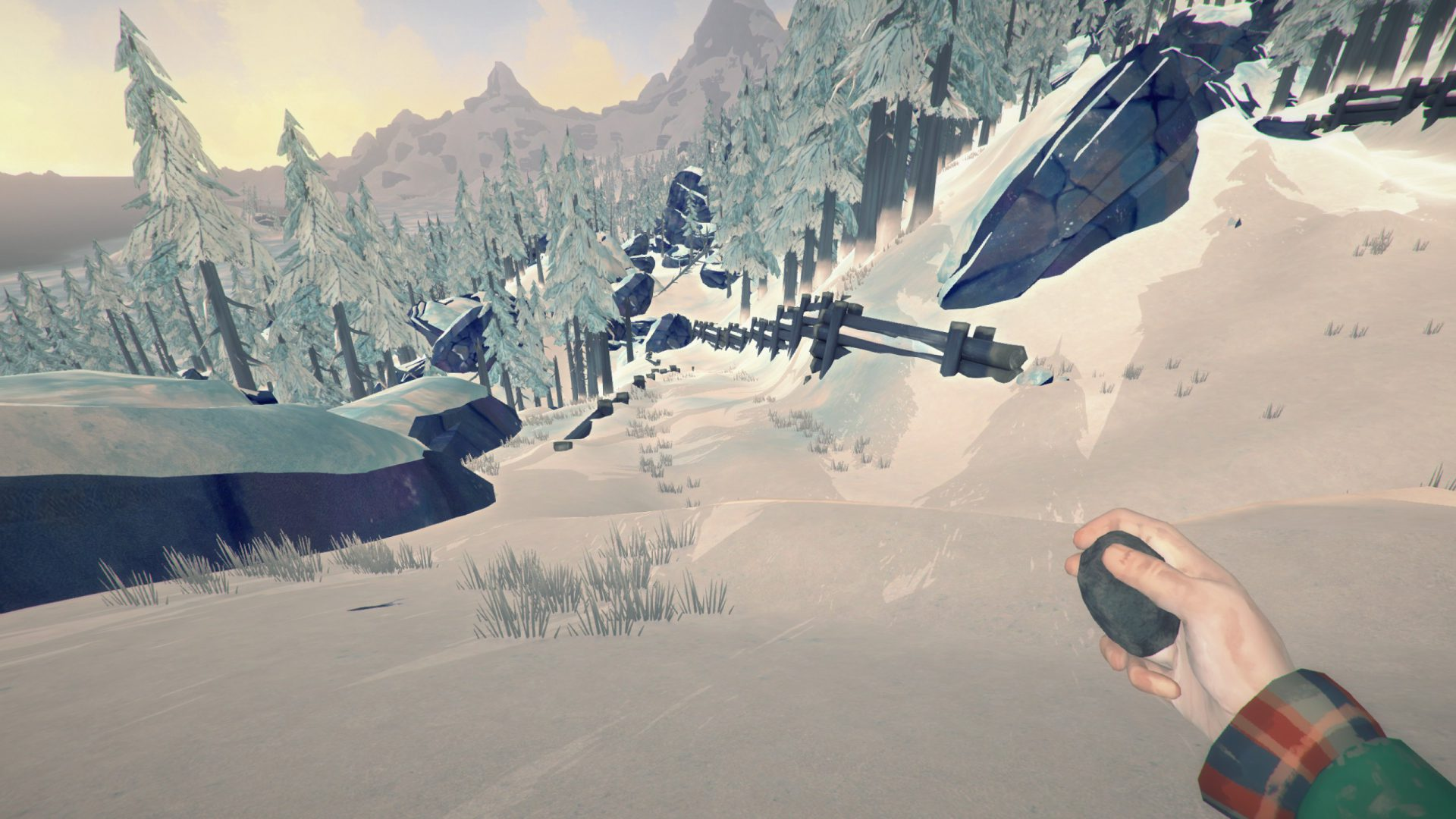 5 Things You Didn't Know About The Long Dark