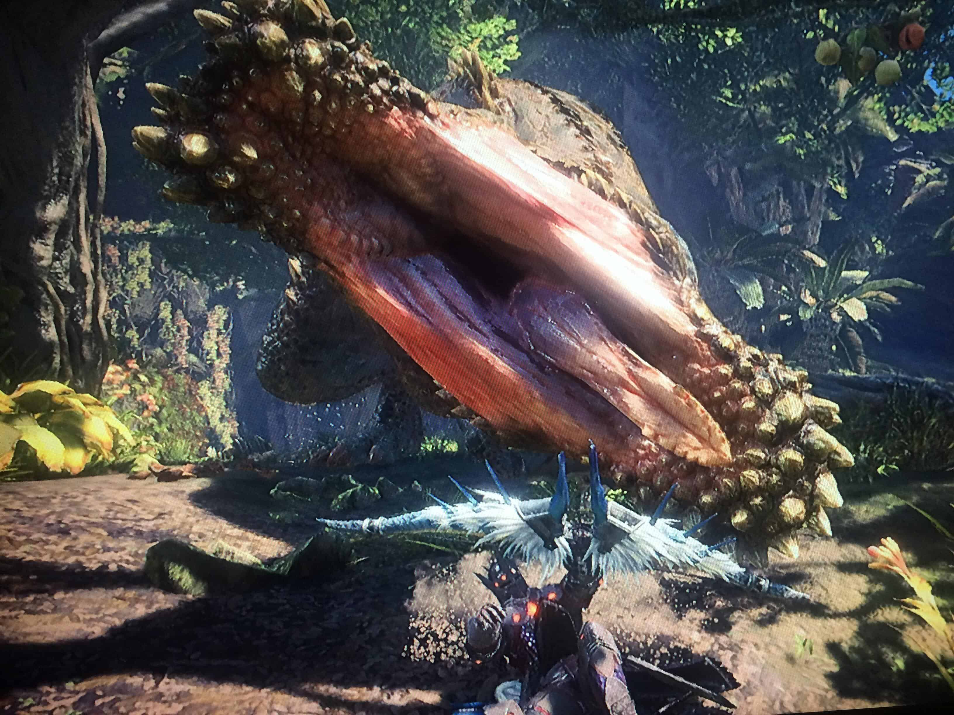 How To Find And Kill Deviljho In Monster Hunter World