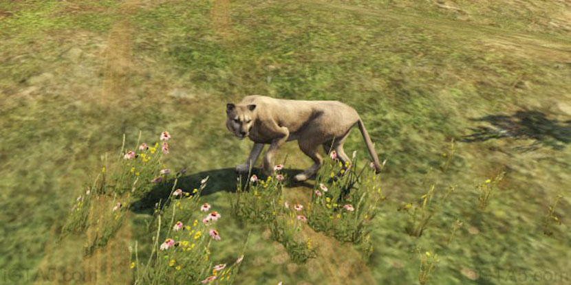 GTA Online Animals