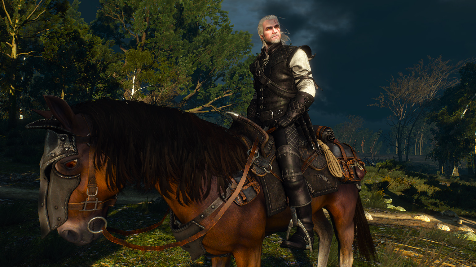 The Best Mods For The Witcher 3: Wild Hunt