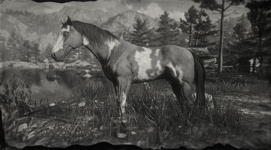 Red Dead Online American Paint