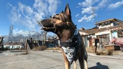 fallout4-dogmeat-5.jpg