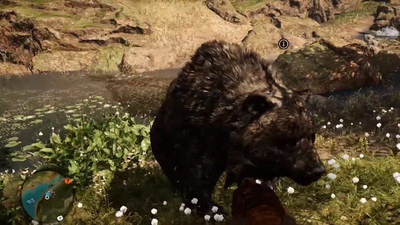 Man Cave Far Cry 5 Walkthrough : Far cry primal where to find all animals and how