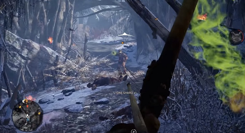 how to kill birds far cry primal