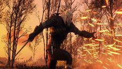 witcher-3-review-screenshot-2.jpg
