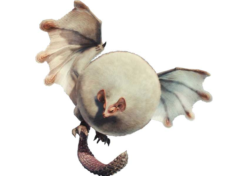 Monster Hunter World Paolumu