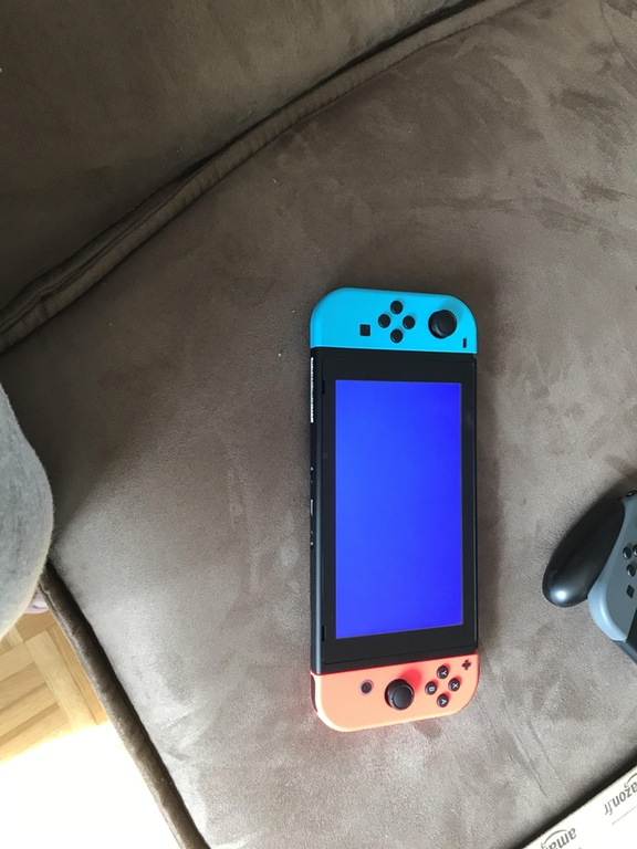 Nintendo Switch - BLue Screen of Death