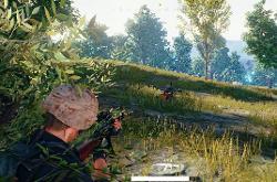 PUBG Grenades Target