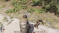 combat-screenshot-2