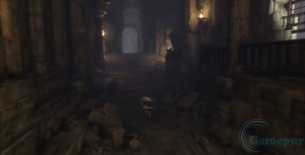trico the last room - photo #36