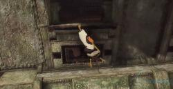 the-last-guardian-part-6-image-8