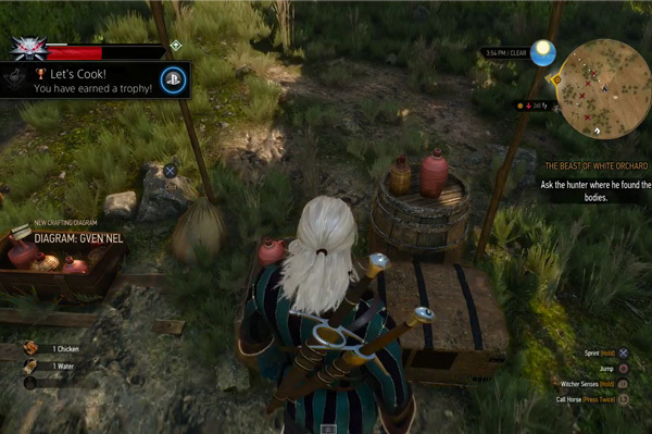 Top 11 The Witcher 3: Wild Hunt's Easter Eggs You Might Not