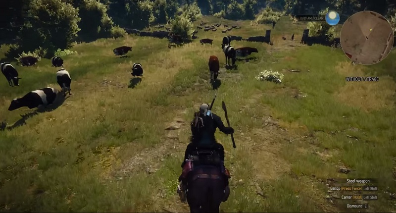 the witcher 3 trophy guide