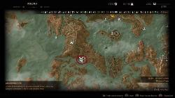 the-witcher-3-hearts-of-stone-rbs-trophy-2.jpg