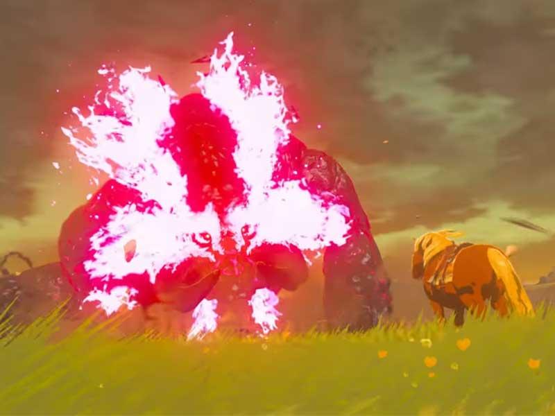 Legend of Zelda Breath of Wild Guide Part 8