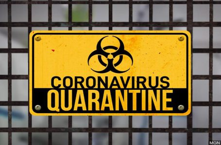 The 5 best quarantine-related games to play