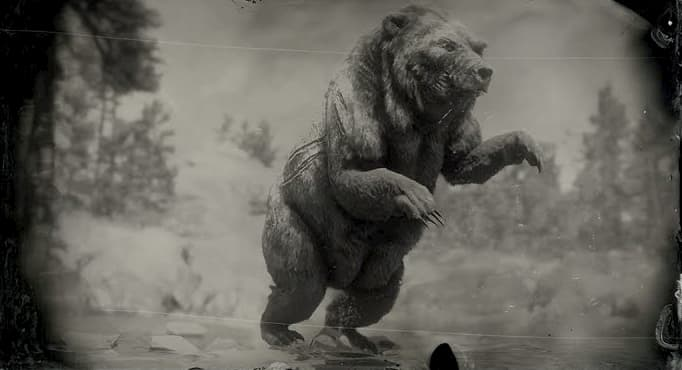 Black and white image of a bear on its hind legs