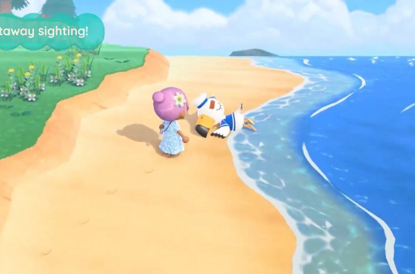 Animal Crossing New Horizons castaway