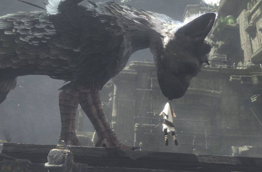 Escaping The Nest, Fighting Another Beast : The Last Guardian Part 8 Walkthrough