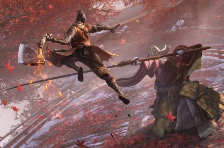 How to play Sekiro: Shadows Die Twice in Co-op and PvP