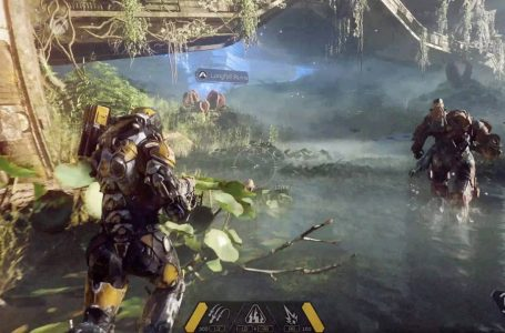 Does Anthem Have Cross-play?