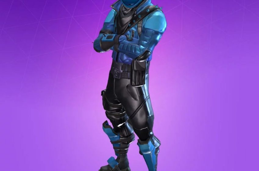 Honor Guard Fortnite Skins