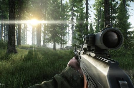 How to Fix Escape from Tarkov Launcher Issues