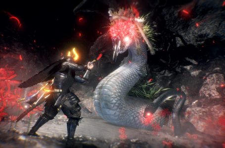 What is Anima in Nioh 2?