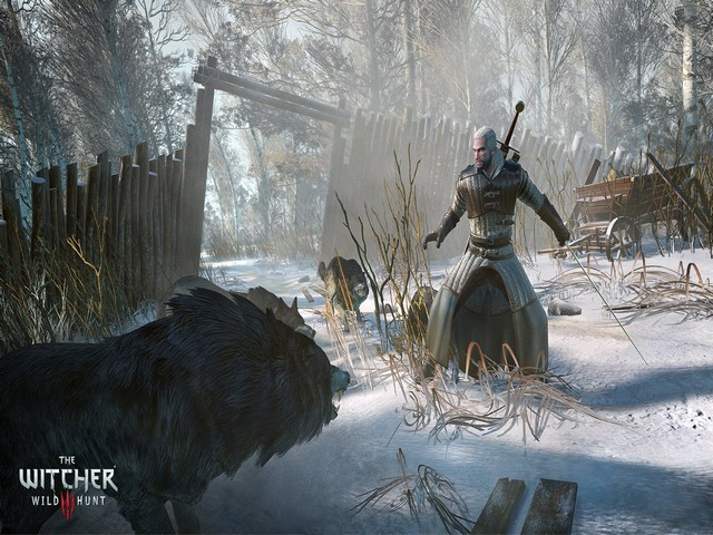 The Witcher 3: Wild Hunt Guide, Combat and Inventory Tips
