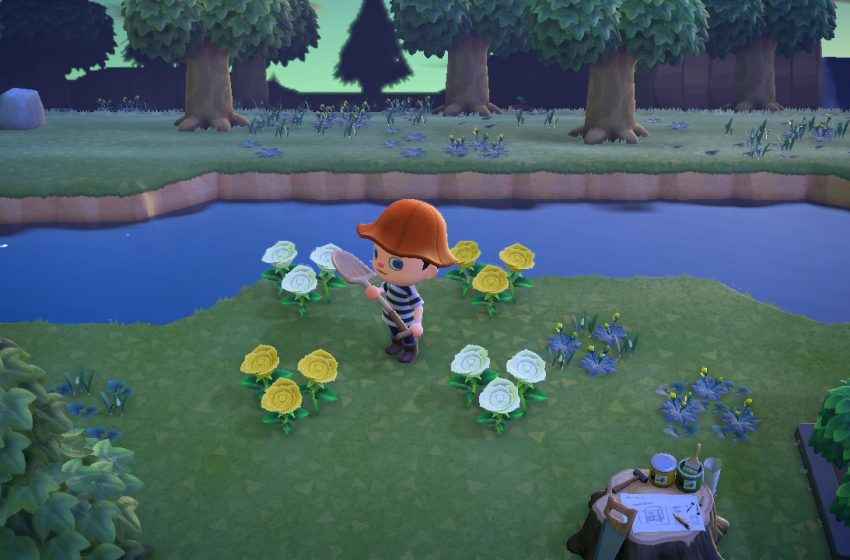 How to get hybrid flowers in Animal Crossing: New Horizons