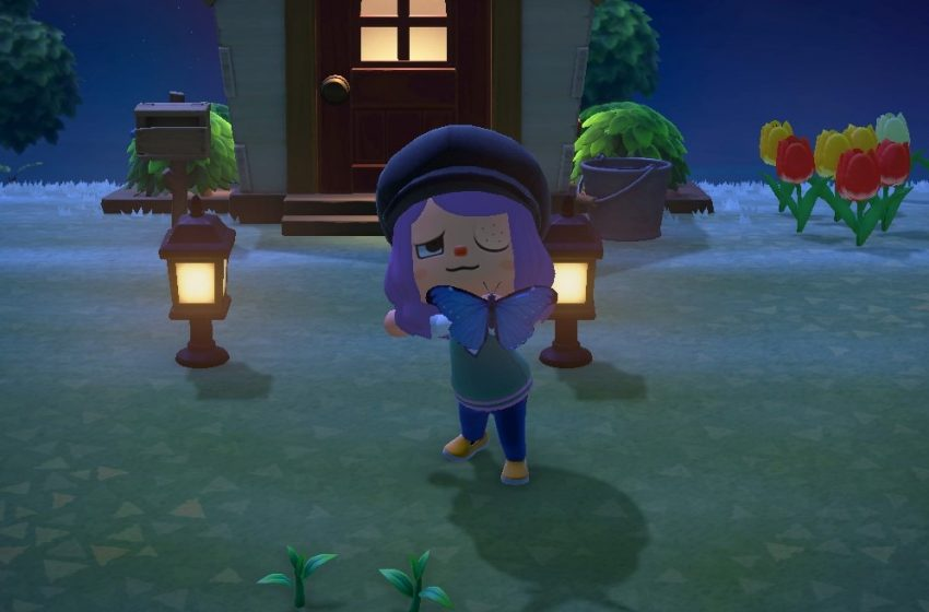 Animal Crossing: New Horizons Bug Guide – spawns and prices