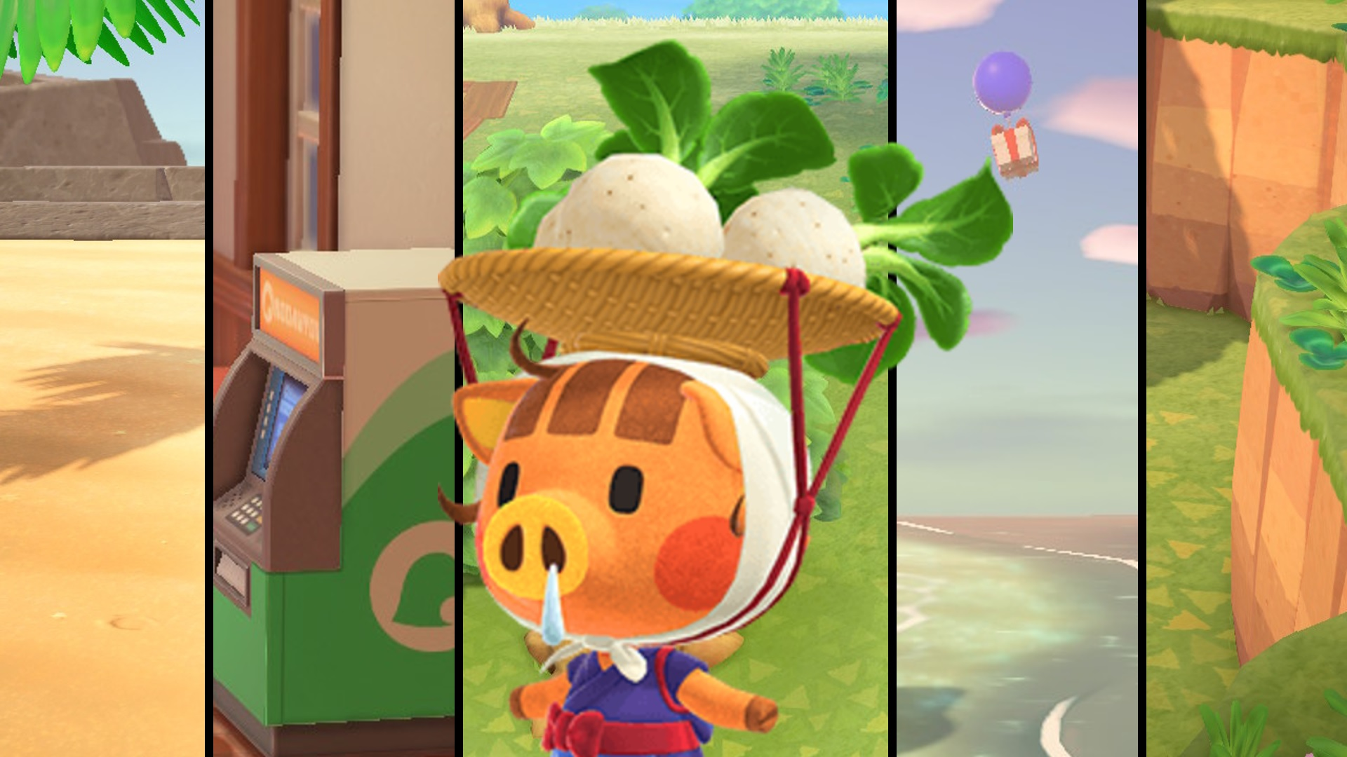 Can you plant turnips in Animal Crossing: New Horizons?