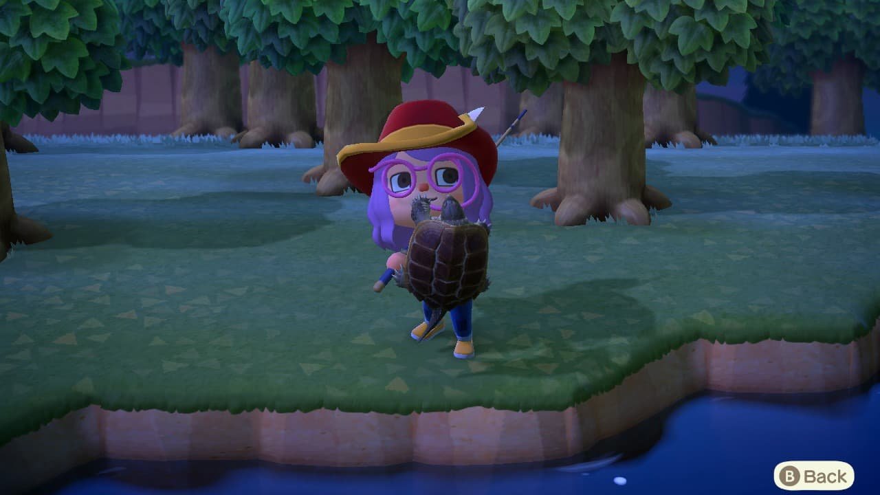 How to catch a Snapping Turtle in Animal Crossing: New Horizons