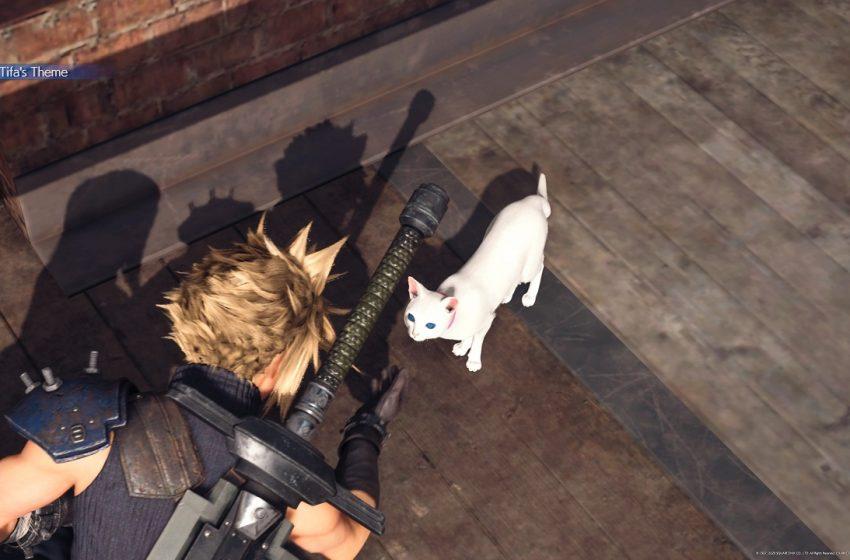 FINAL FANTASY VII REMAKE CAT