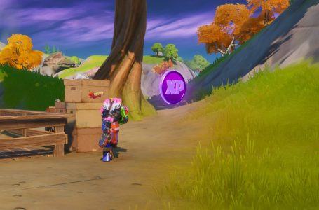 All Fortnite Chapter 2 Season 4 Week 4 XP Coin Locations – Green, Blue, Purple, Gold