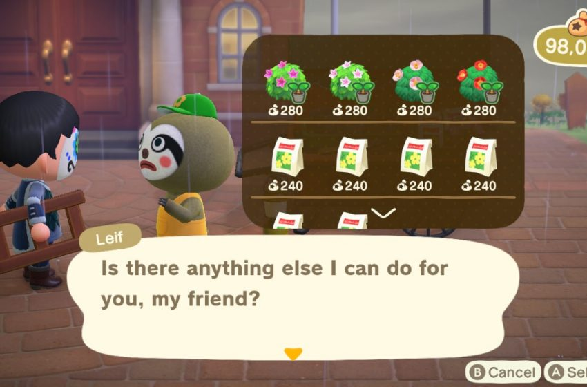 How to get the Cosmos flower and seeds in Animal Crossing: New Horizons