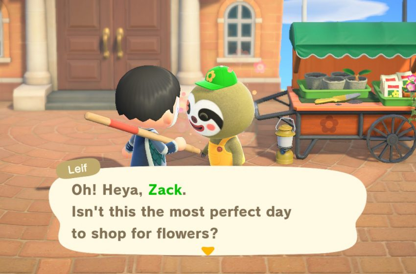 How to get Leif and what they sell in Animal Crossing: New Horizons