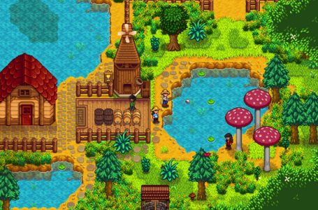 How to catch an eel and its location in Stardew Valley