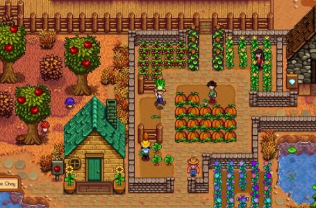 How to get ancient fruit in Stardew Valley