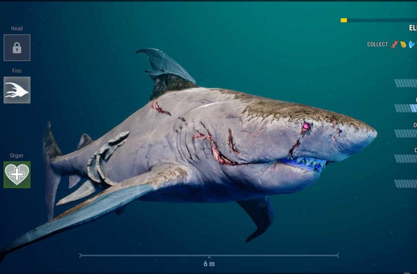 What do the shark stats mean in Maneater?