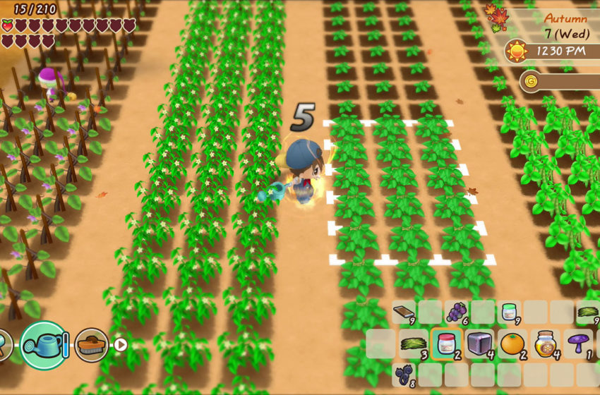How to plant crops in Story of Seasons: Friends of Mineral Town