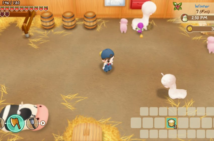 Where to get animals for your farm in Story of Season: Friend of Mineral Town