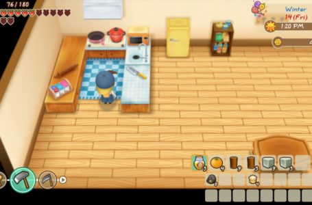 How to get a fridge in Story of Seasons: Friends of Mineral Town